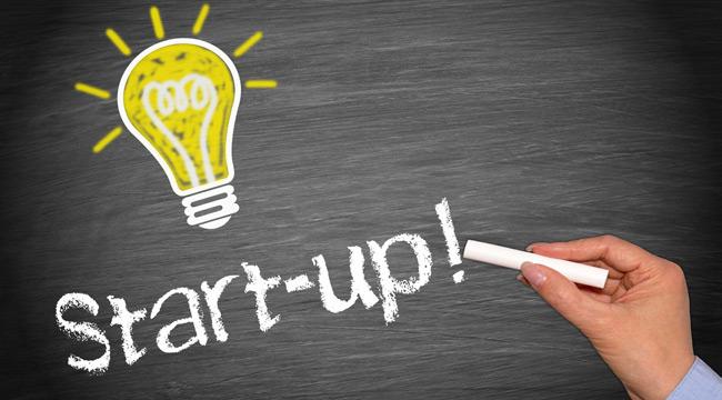 Tunisie : Les start-up, du plomb dans l'aile, mais décidées à s'en faire pousser !