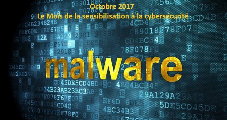 Les malwares, les connaître et comment s'en débarrasser?