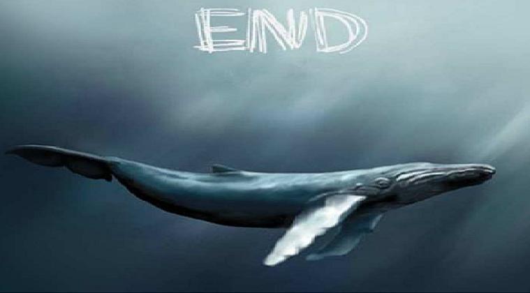 The Blue Whale Suicide Game : conseils préventifs pour protéger son enfant